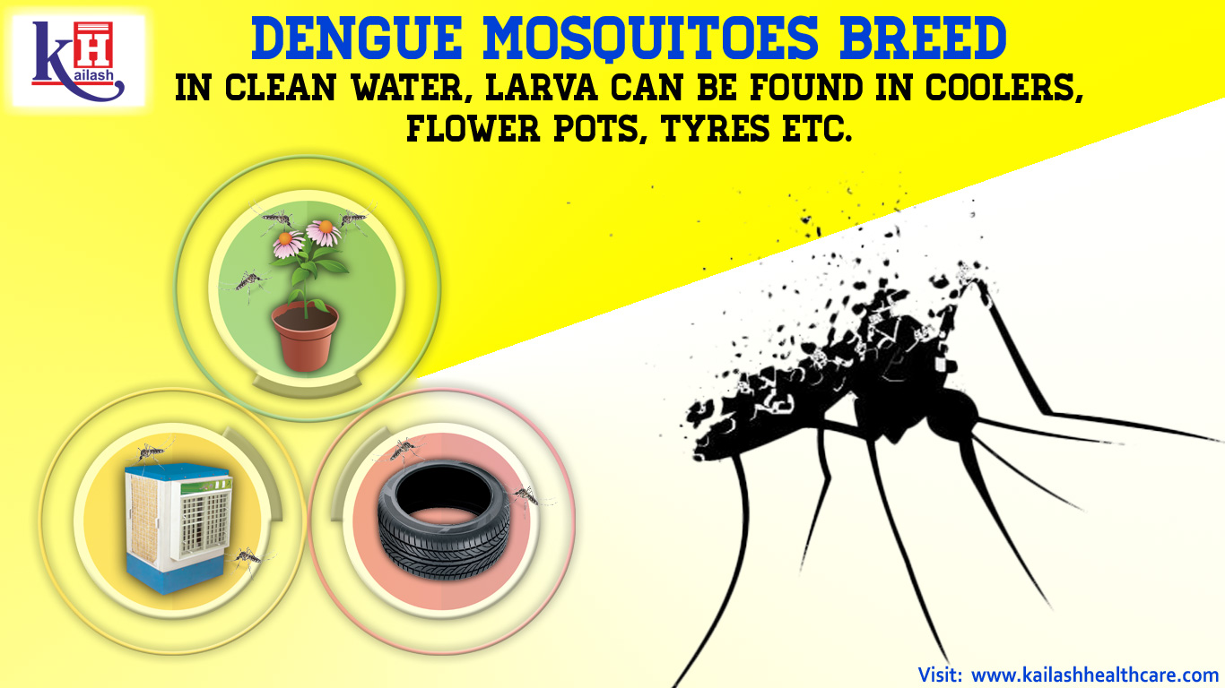 Remove Stagnant Water from your surroundings.. Precaution is better than cure