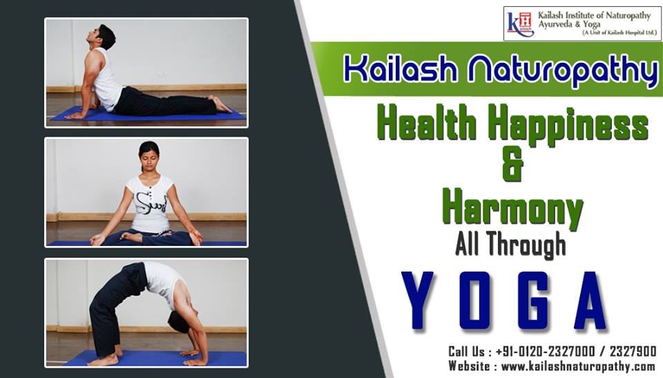 Experience Goodness of Yoga at KINAY for Healthy & disease-free life.
