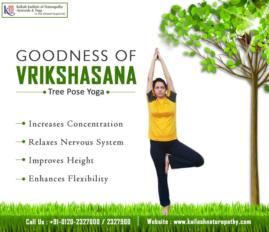 Holistic benefits of Vrikshasana improves concentration & nervous system functions.