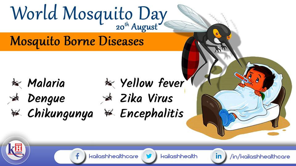 Mosquito-borne diseases like Dengue, Malaria etc are really deadly, epidemic & need immediate Doctor consultation.