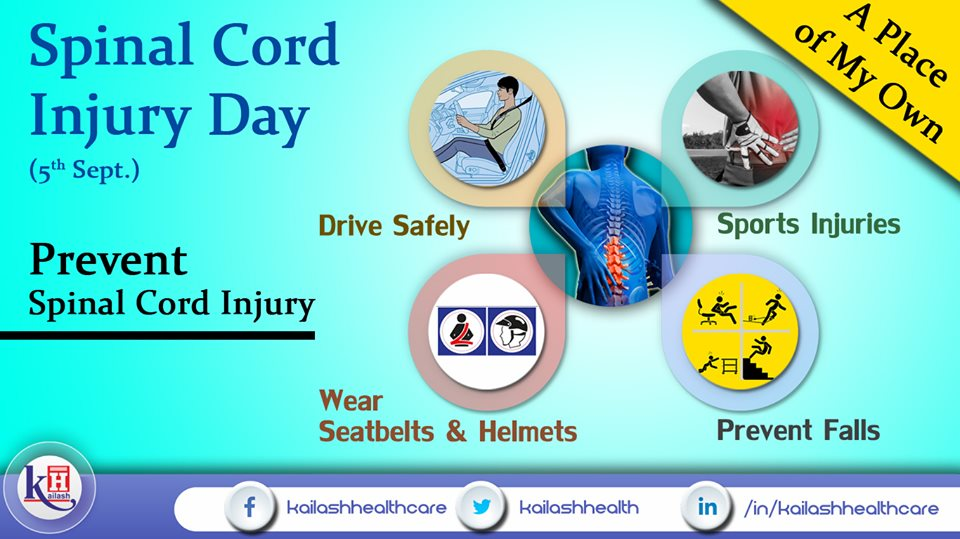 Follow road Safety measures & prevent accidental falls to prevent Spinal Cord injuries