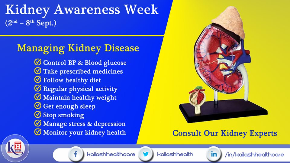 Here are some amazing tips to manage Kidney Disease through your daily lifestyle changes.
