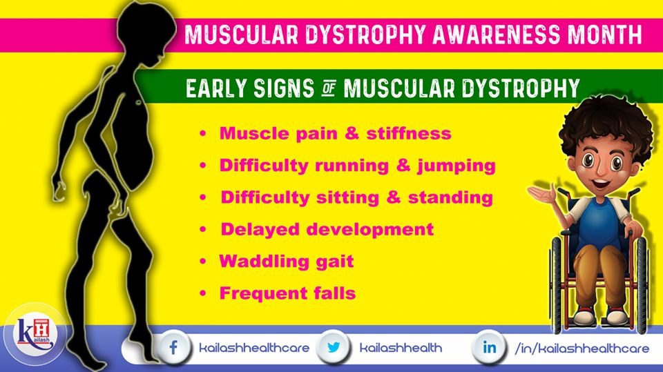 Muscular dystrophy is a group of diseases causing ...