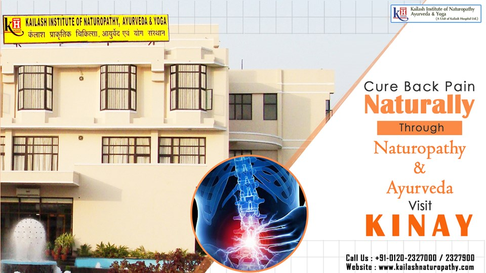 Chronic Back Pain can be naturally treated through effective Naturopathy & Ayurveda therapies. Visit KINAY