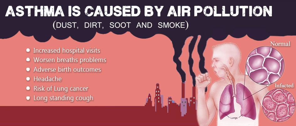 Asthma is Caused by Air Pollution