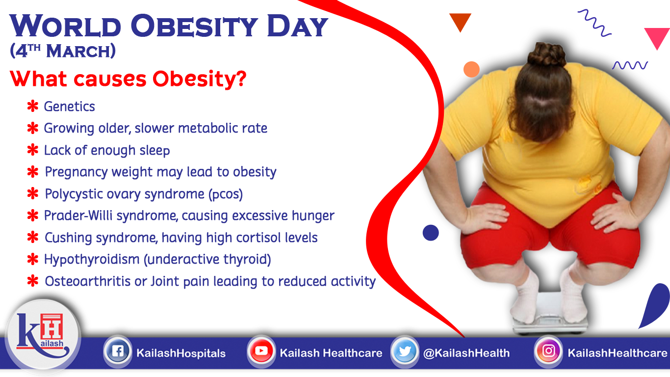 """Here's answer to the big question """"What causes Obesity?"""